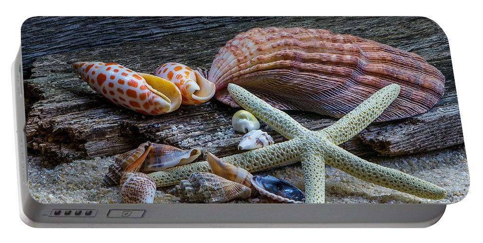 Seashell Portable Battery Charger featuring the photograph Seashells And Driftwood by Randy Walton