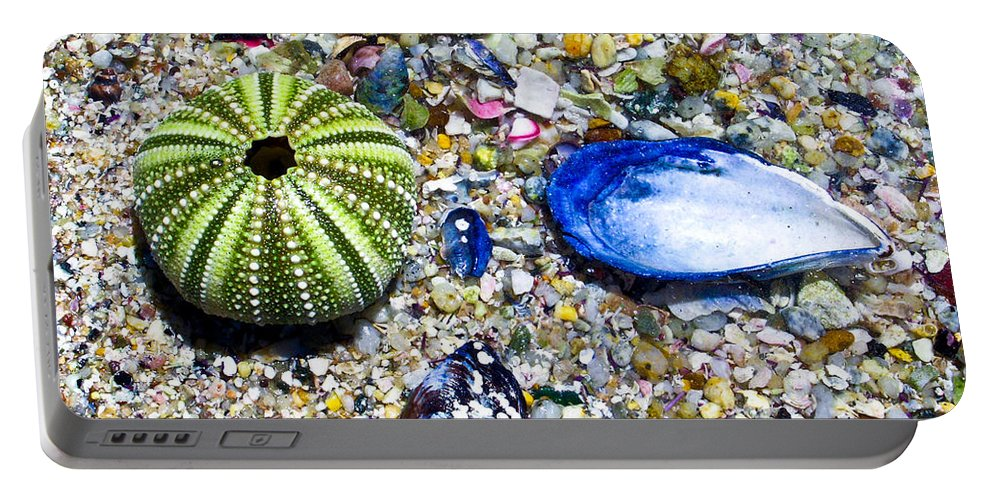 Seashore Portable Battery Charger featuring the photograph Seashore Colors by Douglas Barnett
