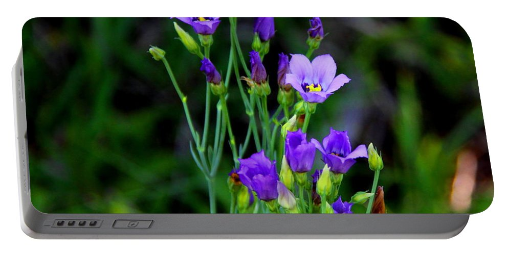 Seaside Gentian Wildflower Portable Battery Charger featuring the photograph Seaside Gentian Wildflower by Barbara Bowen