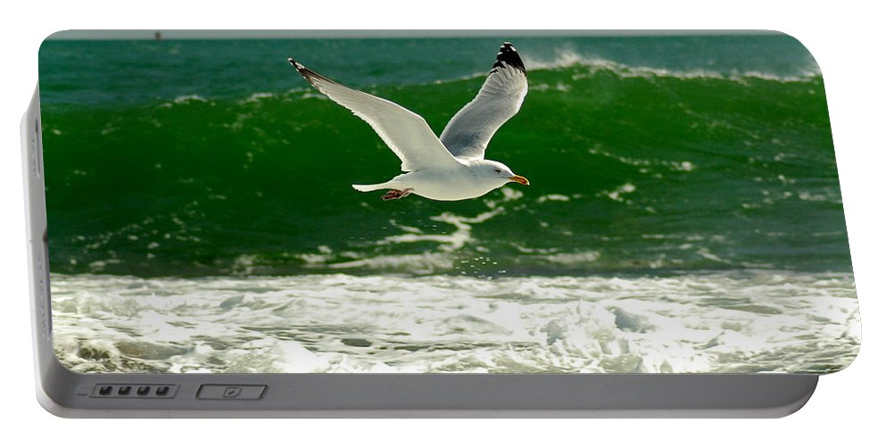 Sea Gull Portable Battery Charger featuring the photograph See Gull by Greg Fortier