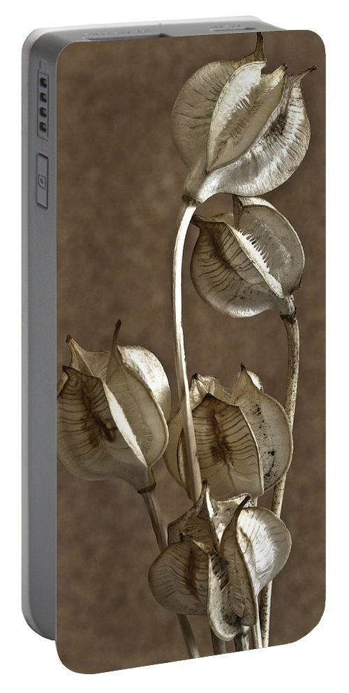 Seeds Portable Battery Charger featuring the photograph Seed Pods Macro by Sandra Foster
