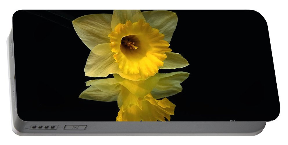 Daffodil Portable Battery Charger featuring the photograph Seeing Doubles by Lois Bryan