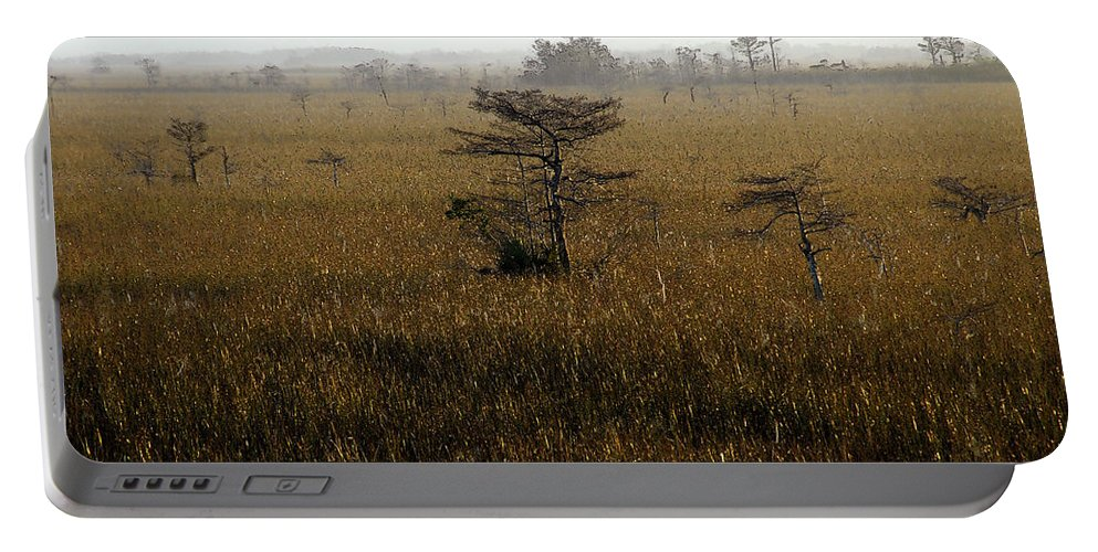 Everglades National Park Florida Portable Battery Charger featuring the painting Seminole Morning by David Lee Thompson