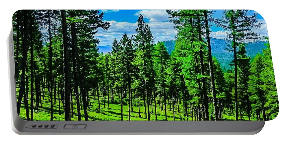 Portable Battery Charger featuring the photograph Sensational Vibes by Dan Hassett