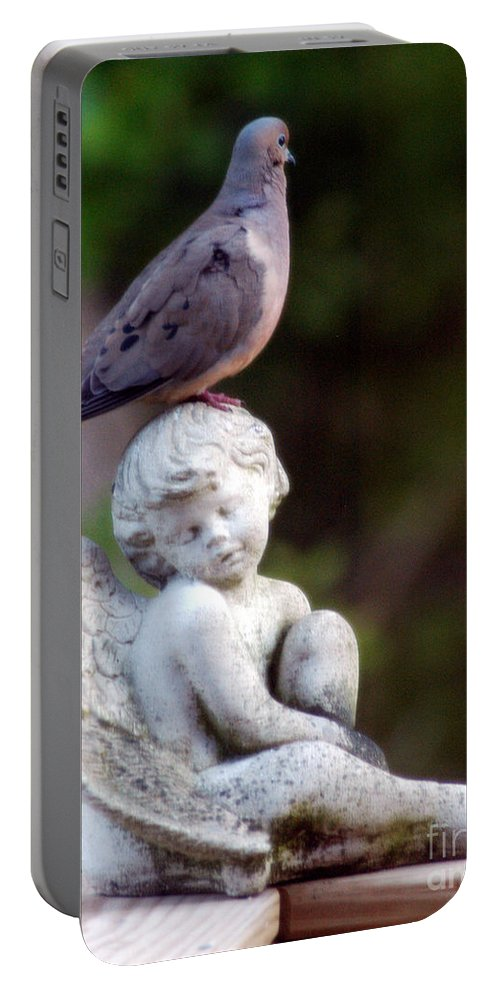 Clay Portable Battery Charger featuring the photograph Sent From Heaven by Clayton Bruster