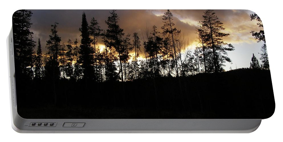 Tree Portable Battery Charger featuring the photograph Sentinels by DeeLon Merritt