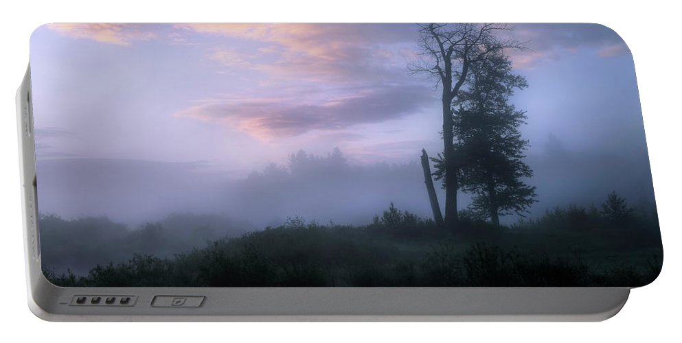 Forest Portable Battery Charger featuring the photograph Sentinels In The Valley by Dan Jurak