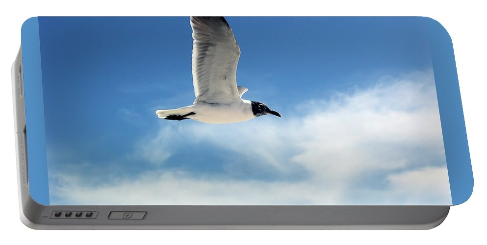 Seagull Portable Battery Charger featuring the photograph Serenity Seagull by Marie Hicks