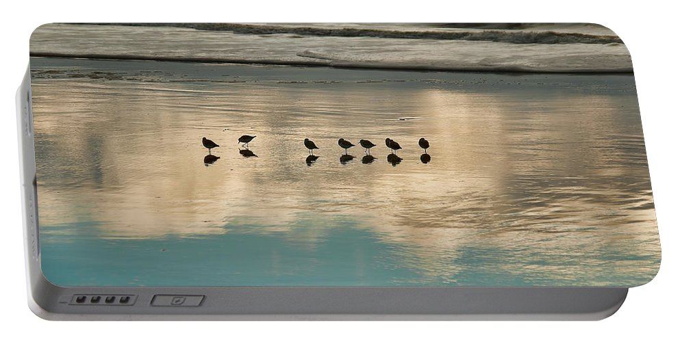 Birds Reflection Sand Ocean Waves Beach Portable Battery Charger featuring the photograph Seven by Wendell Ward
