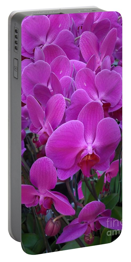 Portable Battery Charger featuring the digital art Sf Pink Flowers by Ron Bissett