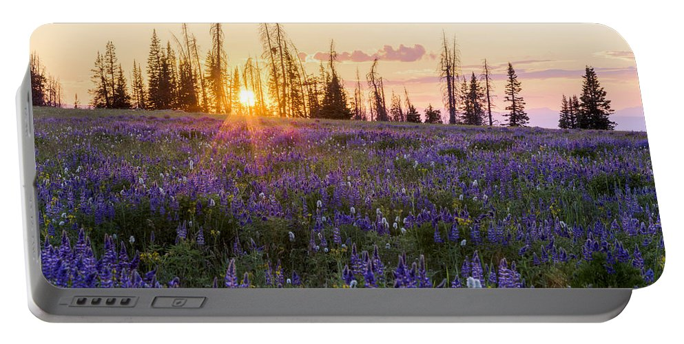 Shades Portable Battery Charger featuring the photograph Shades by Chad Dutson