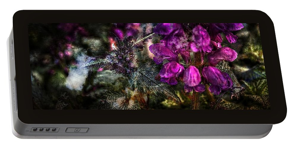 Floral Wall Art Portable Battery Charger featuring the photograph Shades Of Purple by Thom Zehrfeld