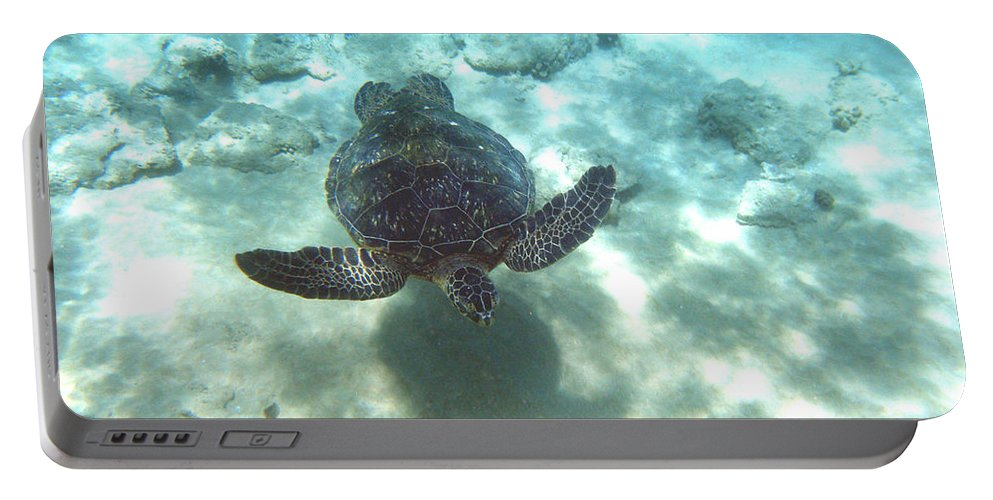 Sea Turtle Portable Battery Charger featuring the photograph Shadow Race by Angie Hamlin