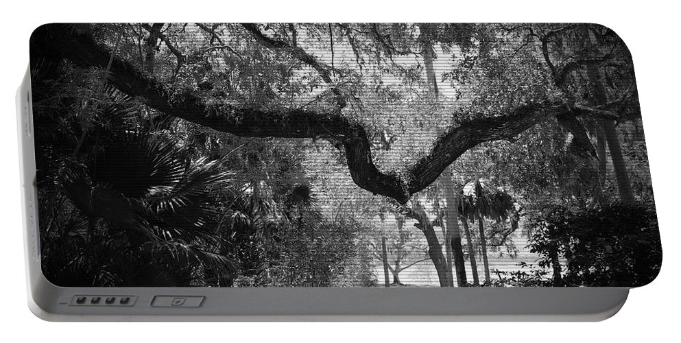 Shannon Portable Battery Charger featuring the photograph Shadowy Pathway by Shannon Sears