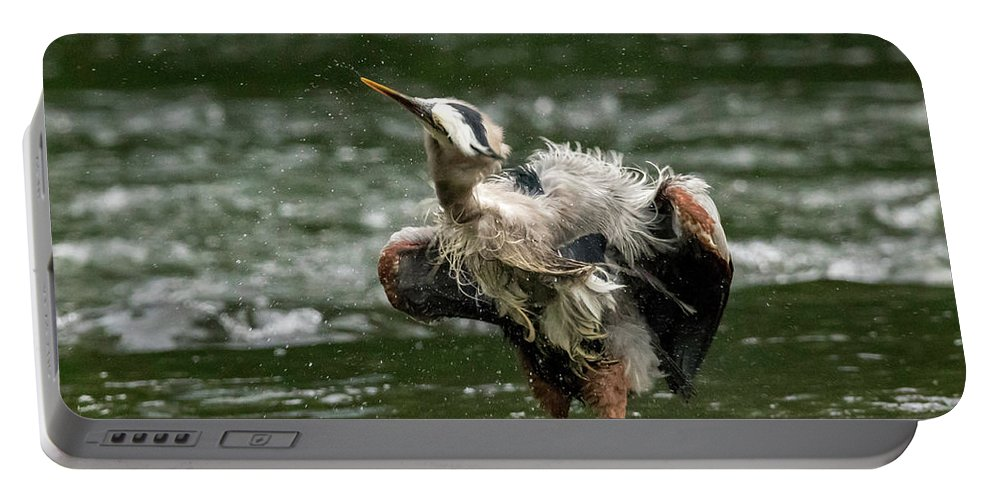 Bird Portable Battery Charger featuring the photograph Shake It Off by Travis Boyd