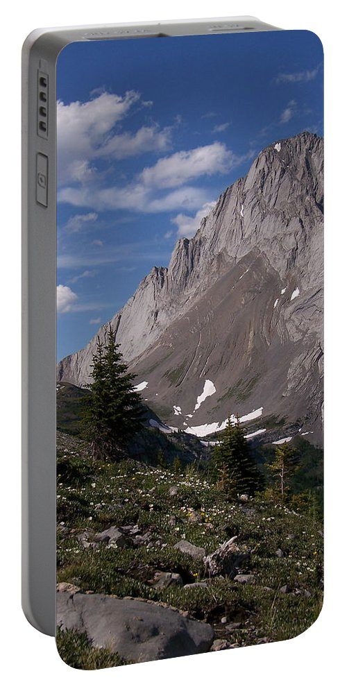 Wild Flowers Portable Battery Charger featuring the photograph Shark Tooth Mountain by Greg Hammond