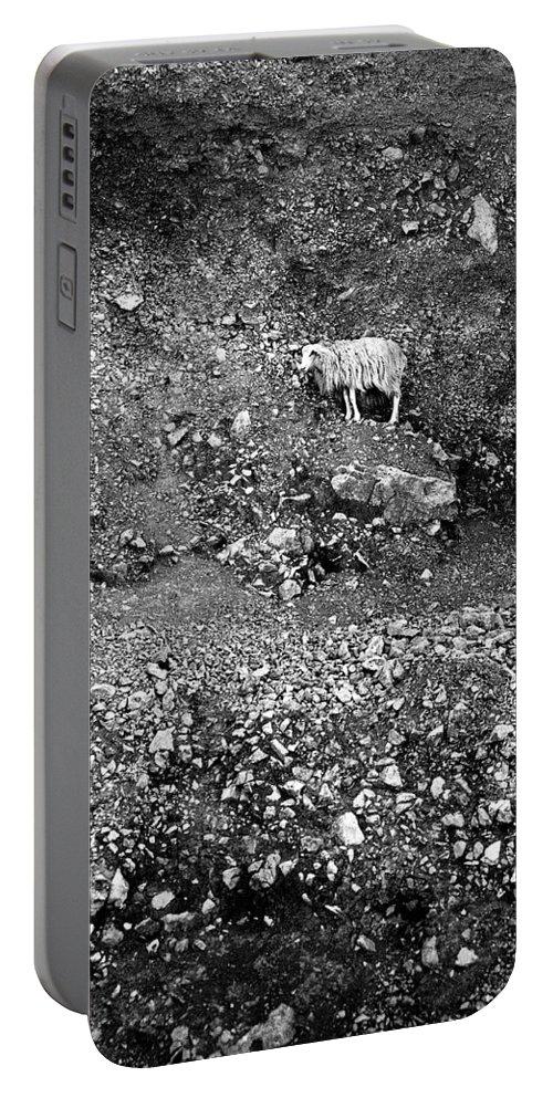 Lehtokukka Portable Battery Charger featuring the photograph Sheep In Bw by Jouko Lehto
