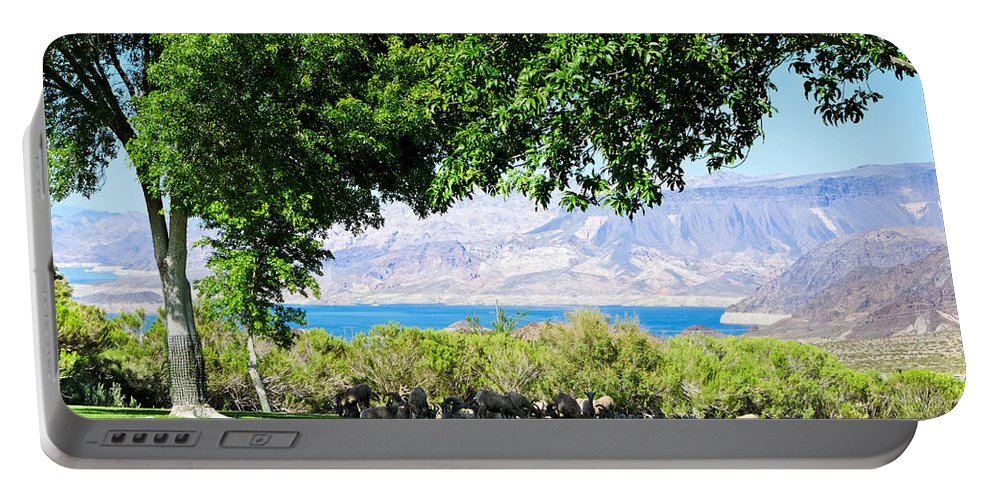 Bighorn Sheep Portable Battery Charger featuring the photograph Sheep In The Shade by Julie Niemela
