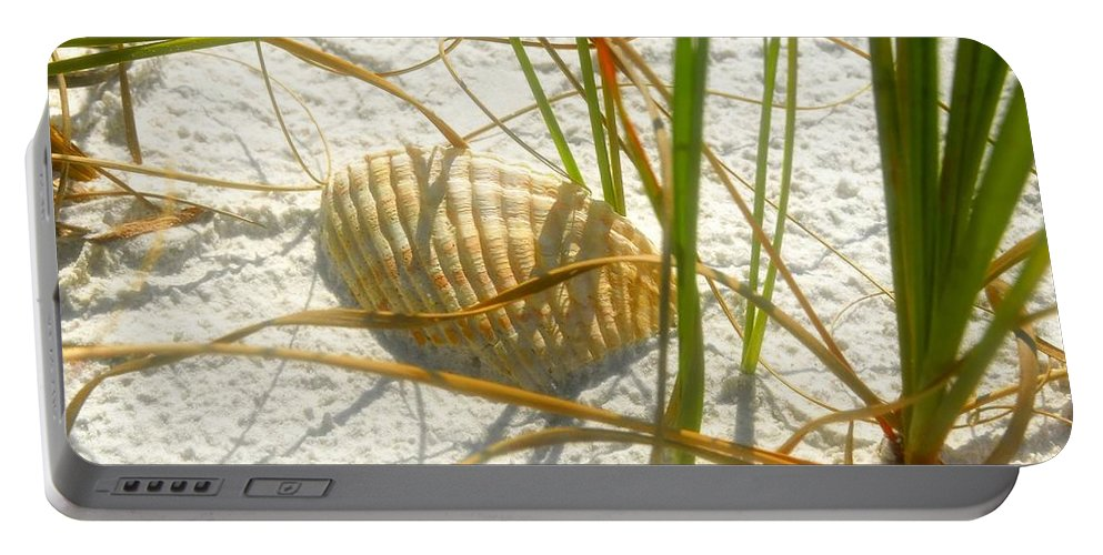 Sea Shell Portable Battery Charger featuring the photograph Shell And Beach by David Lee Thompson
