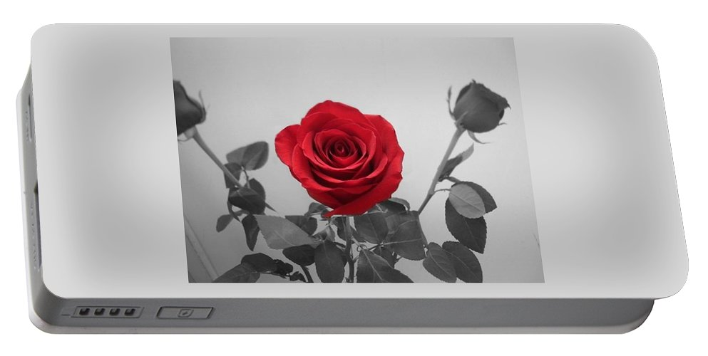 Roses Photography Portable Battery Charger featuring the photograph Shining Red Rose by Georgeta Blanaru