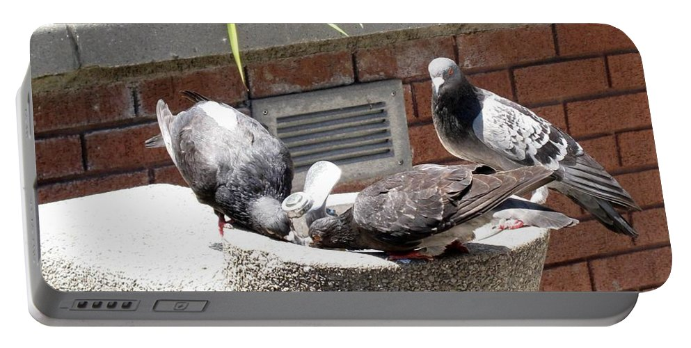 Pigeons Portable Battery Charger featuring the photograph Shooo by Ian MacDonald