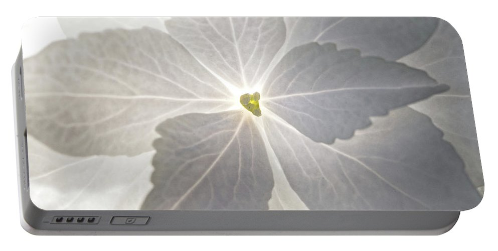 Flower Portable Battery Charger featuring the photograph Shooting Star by Christopher Holmes