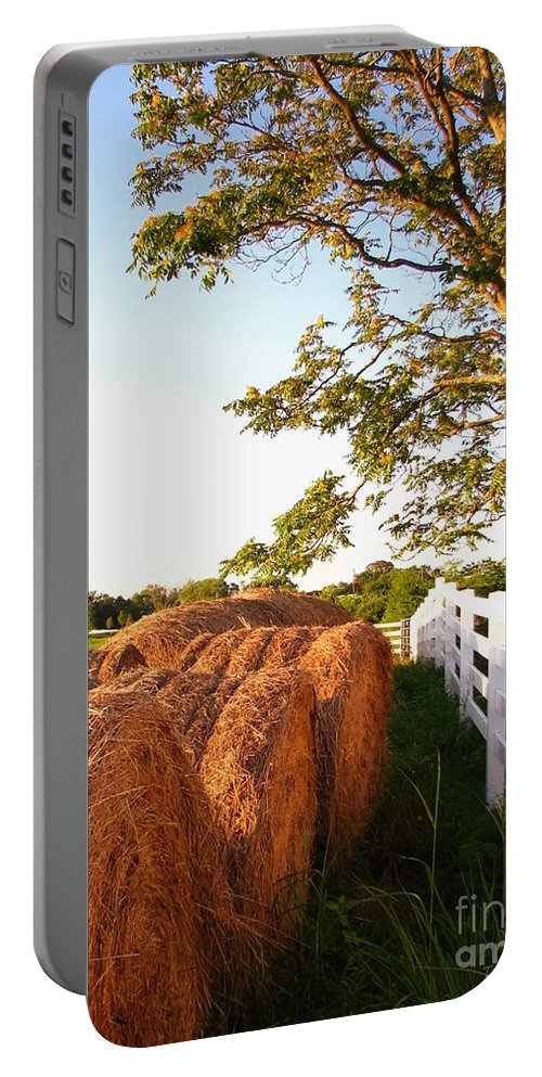 Landscape Portable Battery Charger featuring the photograph Side-by-side by Todd Blanchard