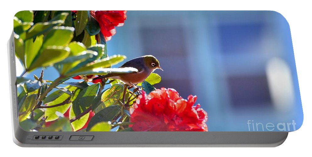 Silvereye Portable Battery Charger featuring the photograph Silver Eye by Suranga Basnagala