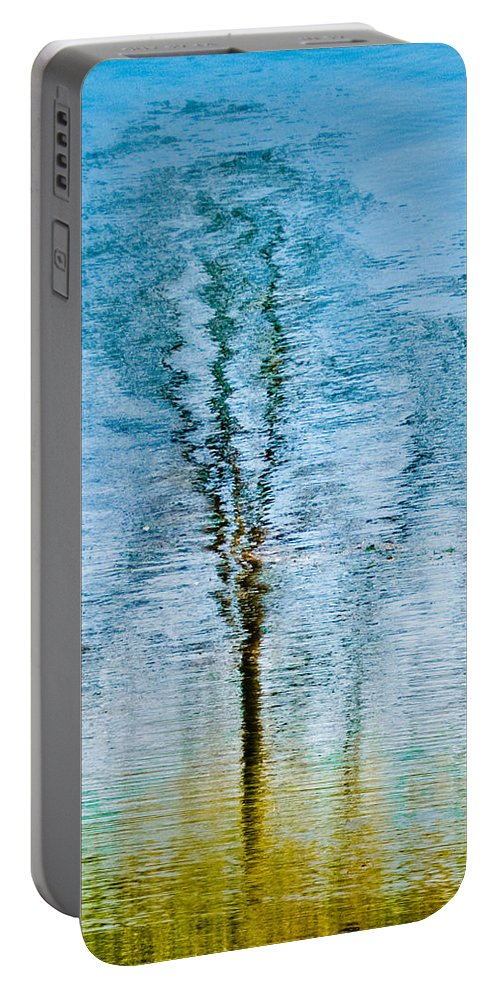 Silver Portable Battery Charger featuring the photograph Silver Lake Tree Reflection by Michael Bessler