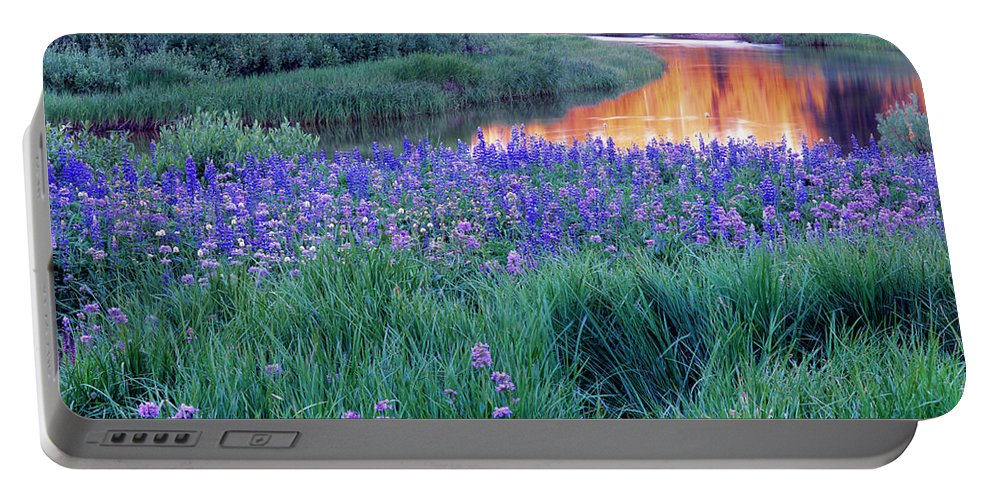 Idaho Scenics Portable Battery Charger featuring the photograph Silvery Lupine by Leland D Howard