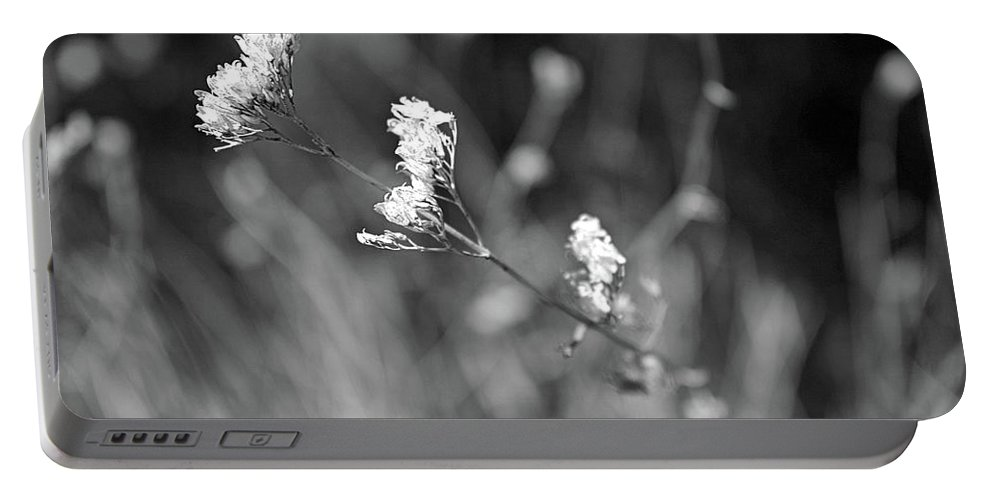 Black And White Flower Portable Battery Charger featuring the photograph Simple by Rosalyn Zacha