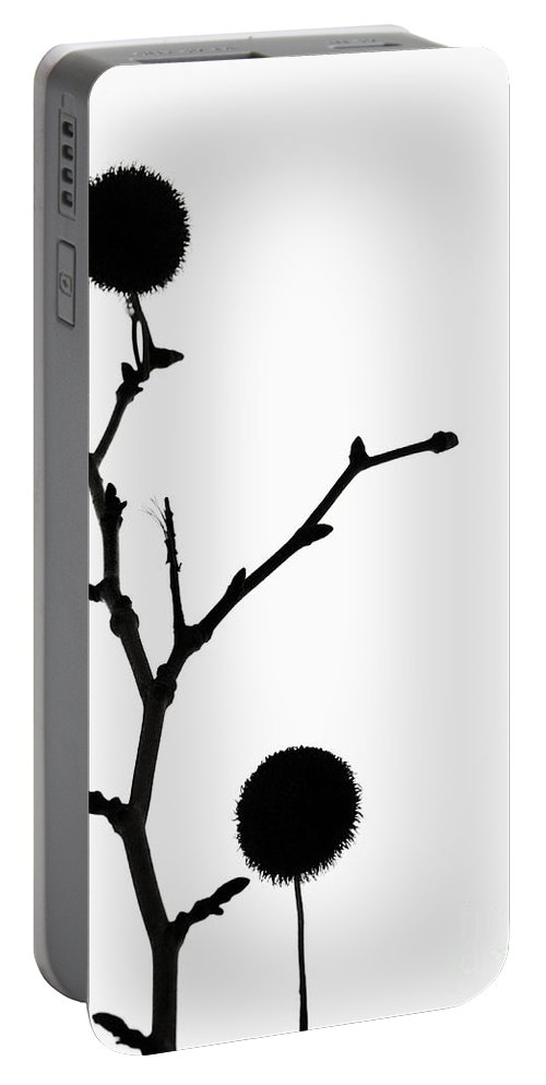 Simple Portable Battery Charger featuring the photograph Simple Silhouette 3 by Tara Turner