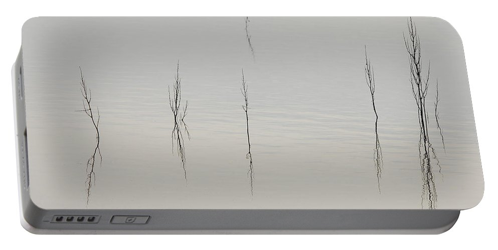 Lake Portable Battery Charger featuring the photograph Simplicity by Donna Blackhall