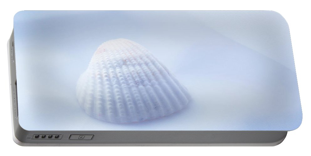 Seashell Portable Battery Charger featuring the photograph Simplicity by Linda Sannuti