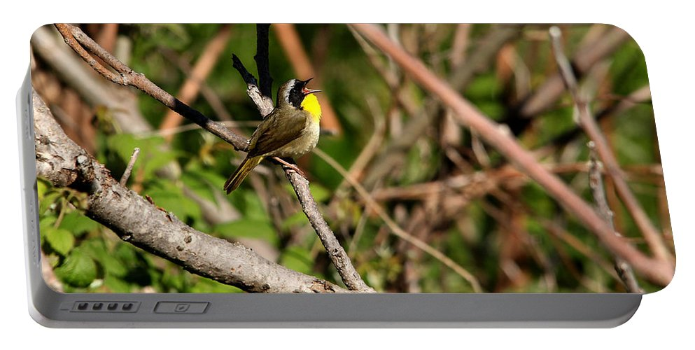 Common Yellowthroat Warbler Portable Battery Charger featuring the photograph Singing Bandit by Debbie Oppermann