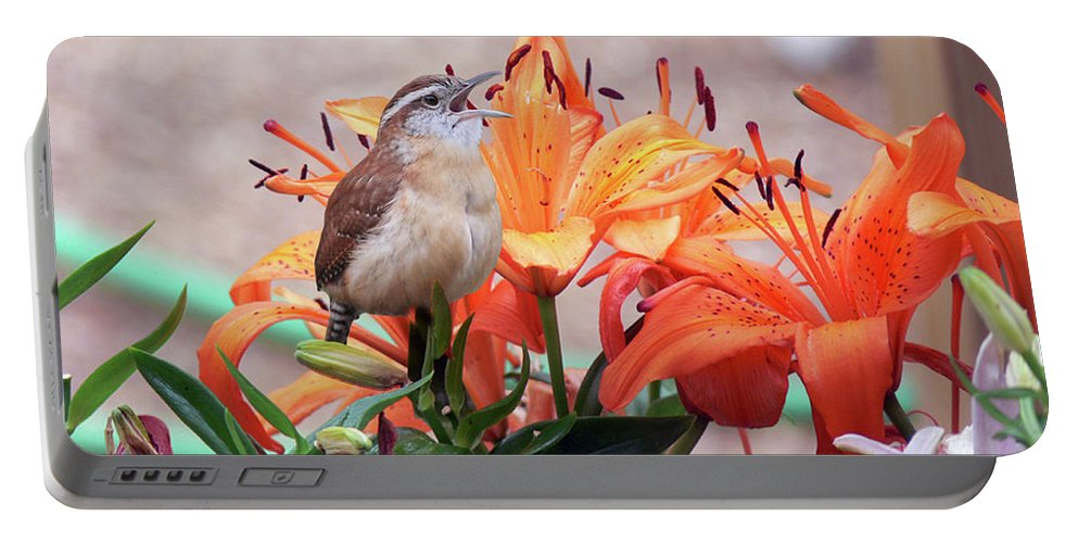 Wren Portable Battery Charger featuring the photograph Singing Wren In The Lilies by Ericamaxine Price