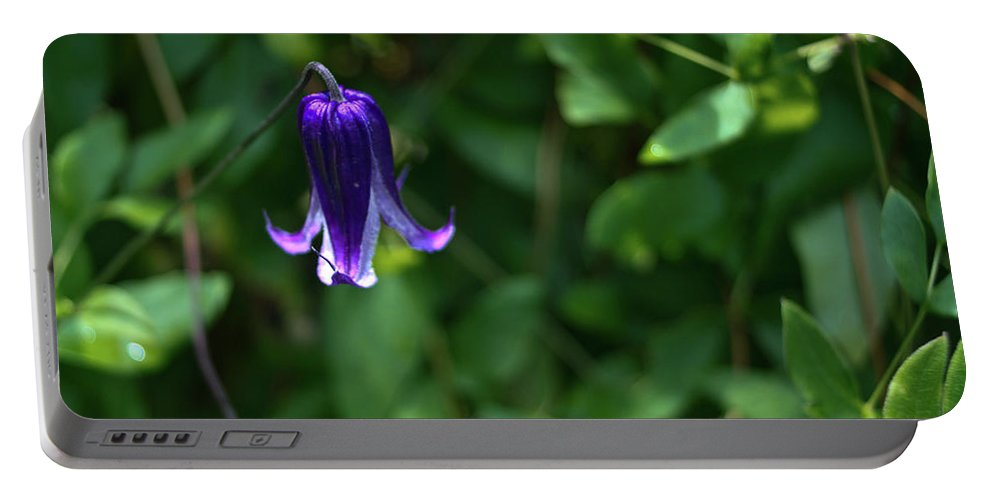 Single Portable Battery Charger featuring the photograph Single Clematis Bell Blossom by Douglas Barnett
