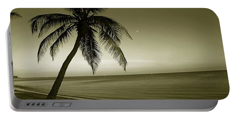 Palm Tree Portable Battery Charger featuring the photograph Single Palm At The Beach by Susanne Van Hulst