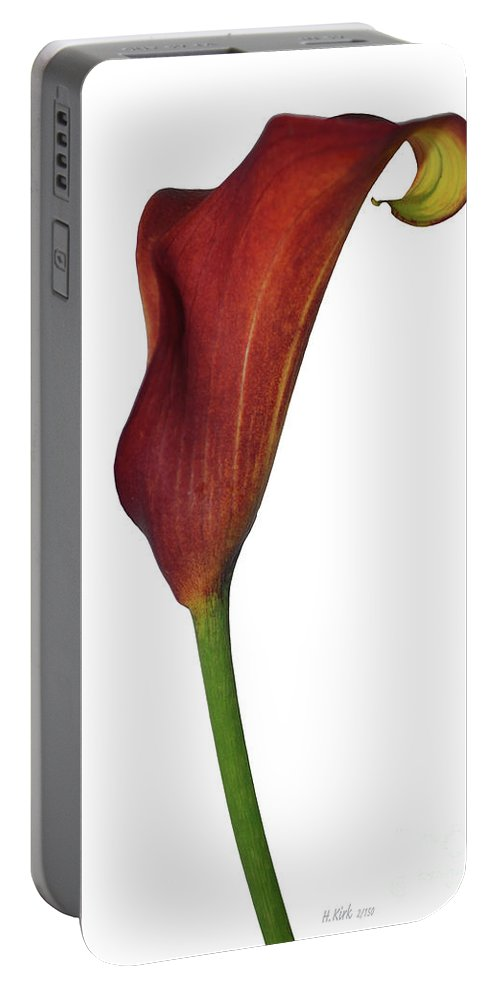 Rust Portable Battery Charger featuring the photograph Single Rust Calla Lily Stem by Heather Kirk