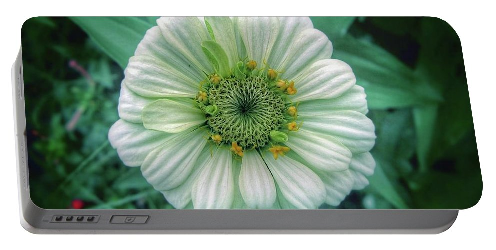 Flower Portable Battery Charger featuring the photograph Single White Zinnia by John Myers