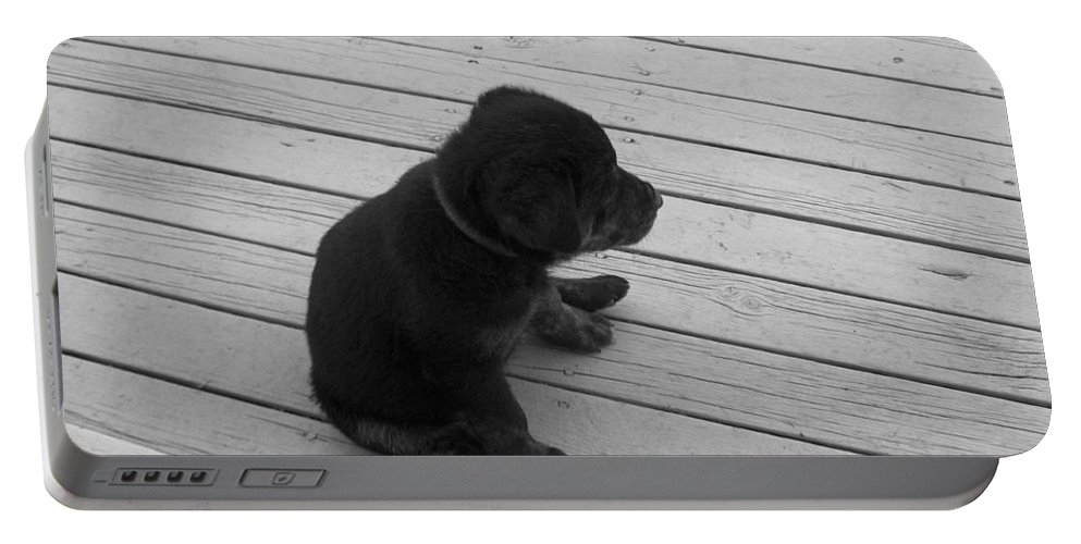 Puppy Dog Baby Relaxing Patience Black And White Photography Cute Portable Battery Charger featuring the photograph Sit And Think by Andrea Lawrence
