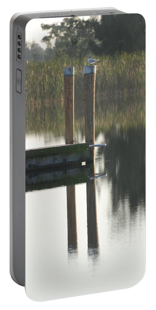 Grass Portable Battery Charger featuring the photograph Sitting Bird by Rob Hans