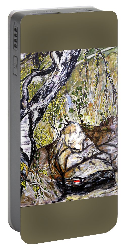 Landscape Portable Battery Charger featuring the painting Skryta Identita by Pablo de Choros