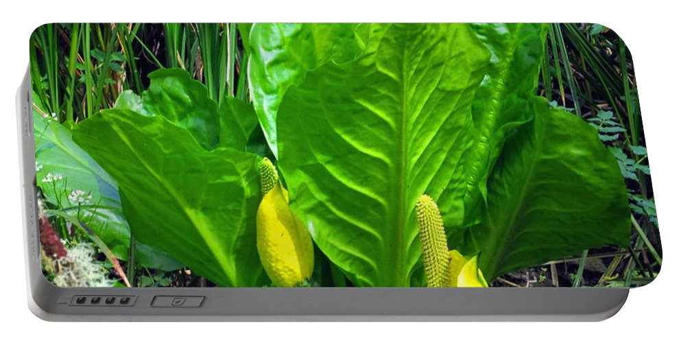 Skunk-cabbage Portable Battery Charger featuring the photograph Skunk Cabbage In Bloom by Joyce Dickens