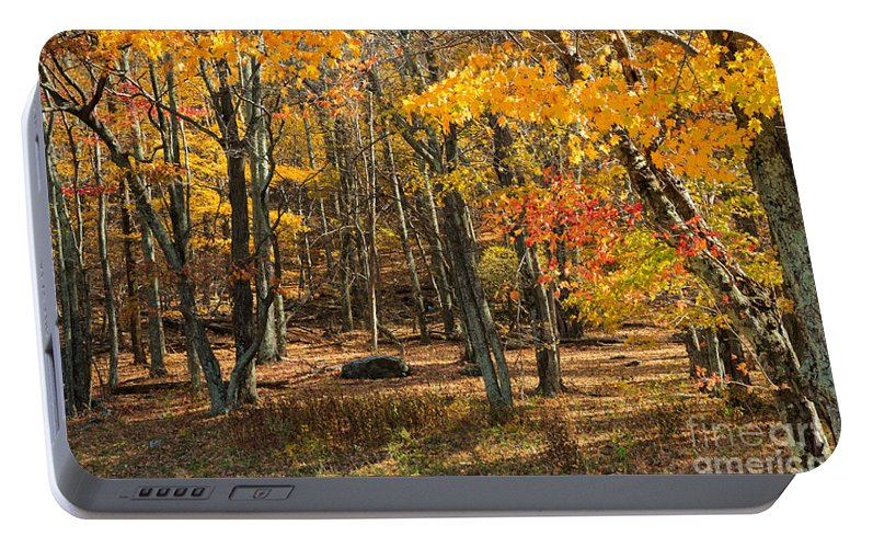 Road Portable Battery Charger featuring the photograph Skyline Drive At Naked Creek Overlook In Shenandoah National Park by Louise Heusinkveld