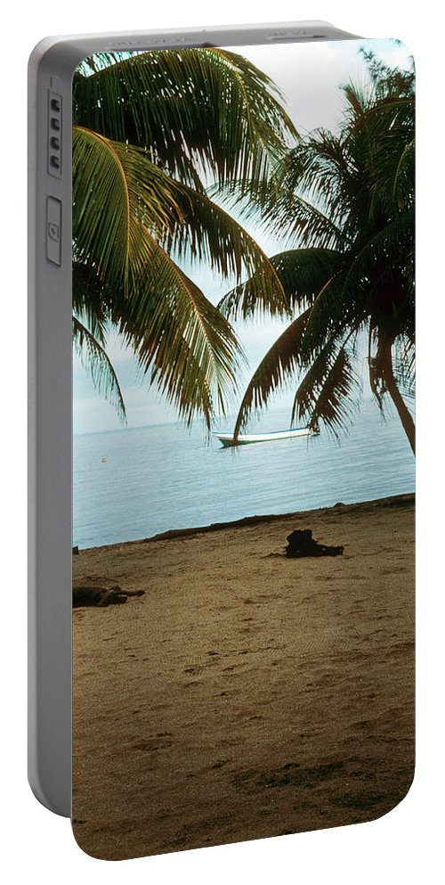 Beach Portable Battery Charger featuring the photograph Sleeping Dogs by Gary Wonning