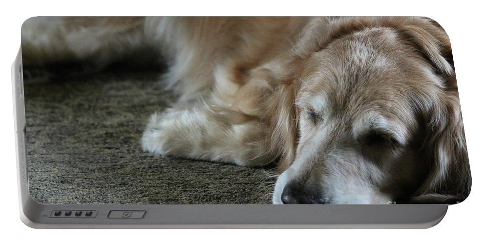 Golden Retriever Portable Battery Charger featuring the photograph Sleeping Golden by Veronica Batterson