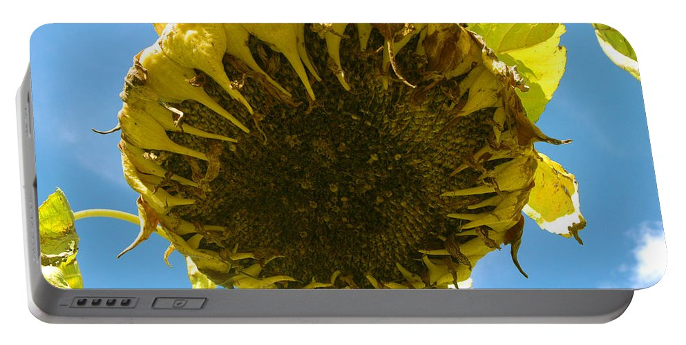 Sunflower Portable Battery Charger featuring the photograph Sleeping Sunflower by Trish Hale