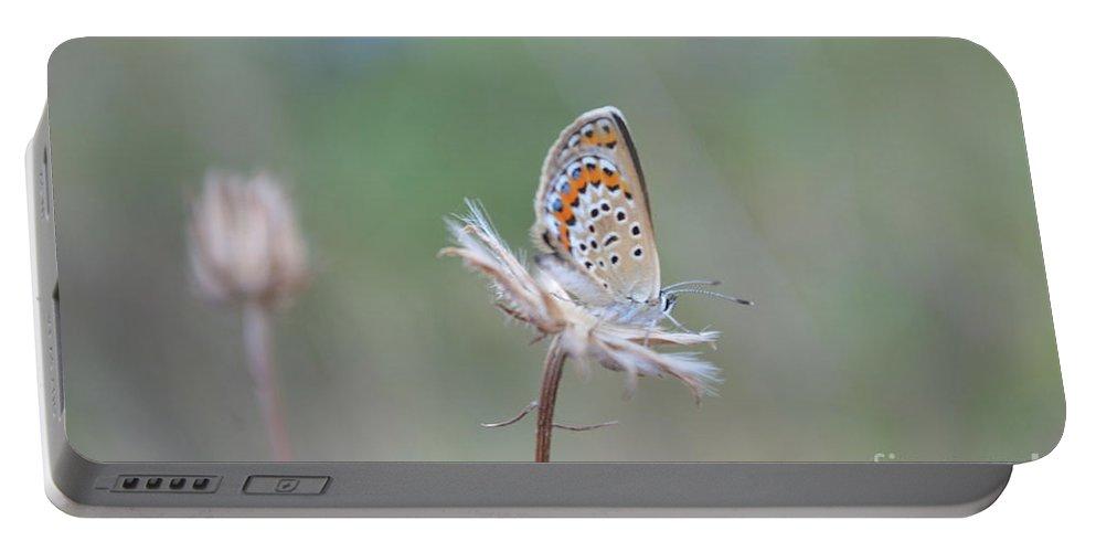 Portable Battery Charger featuring the photograph Sleepy Beauty by Eva Maria Nova