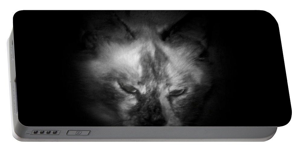 Animals Portable Battery Charger featuring the photograph Sleepy Head by Betty Northcutt